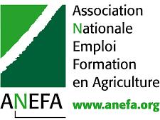 """Résultat de recherche d'images pour """"anefa"""""""